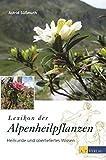 Lexikon der Alpenheilpflanzen. Heilkunde und überliefertes Wissen