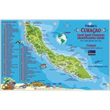 Curacao Dive Map & Reef Creatures Guide Franko Maps Laminated Fish Card