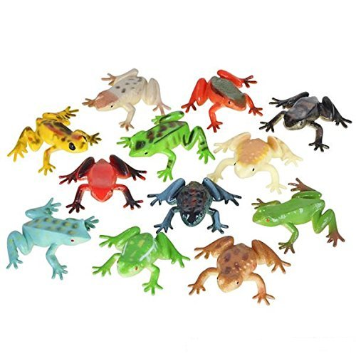 Poison Dart Frogs - 2