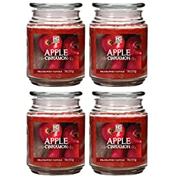 Hosley Set of 4 Apple Cinnamon Jar Candles 18oz Each. Hand Poured Using High Quality Wax Blend Infused with Essential Oils. BULK BUY Ideal GIFT/ PARTY WEDDINGS SPA REIKI MEDITATION BATHROOM SETTINGS