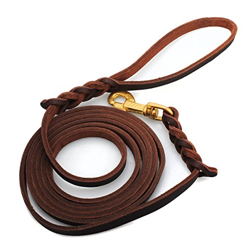 Dog Leash,Bienna Heavy Duty Long Brown Genuine Leather Braided Training and Walking Lead Rope for Small Medium and Large Dogs Pet [No Pull] [Copper (Braided Leather Leads)