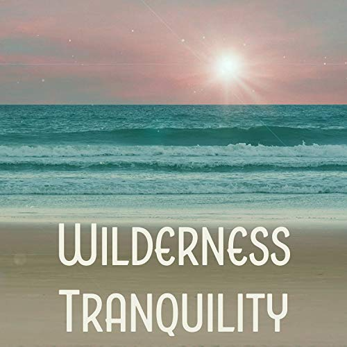 (Wilderness Tranquility - Waterfalls of Meditation, Audio for Ambiance, Trickling Water Soundscapes )