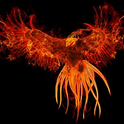 Ave fenix feat adan cruz by adolfhlow on amazon music - Fenix bird hd images ...