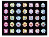 12 x 16 Black Insert - Holds 35 Casino Poker Chips (not included)