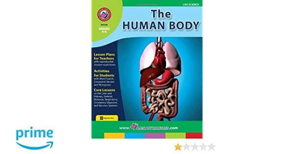 Amazon.com: The Human Body: Systems and Function (9781553190653 ...