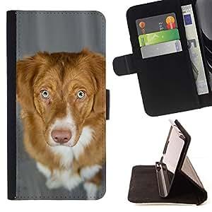 Momo Phone Case / Flip Funda de Cuero Case Cover - Pato de Nueva Escocia Perro perdiguero tocante del perro; - Samsung Galaxy S6 Active G890A