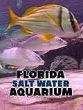 Florida Salt Water Aquarium