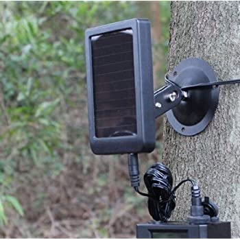 Amazon Com Bushnell 119656c Trophy Cam Hd Brown Solar Panel Clam Sports Amp Outdoors