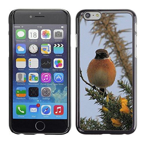 """Premio Sottile Slim Cassa Custodia Case Cover Shell // F00008141 des oiseaux // Apple iPhone 6 6S 6G PLUS 5.5"""""""