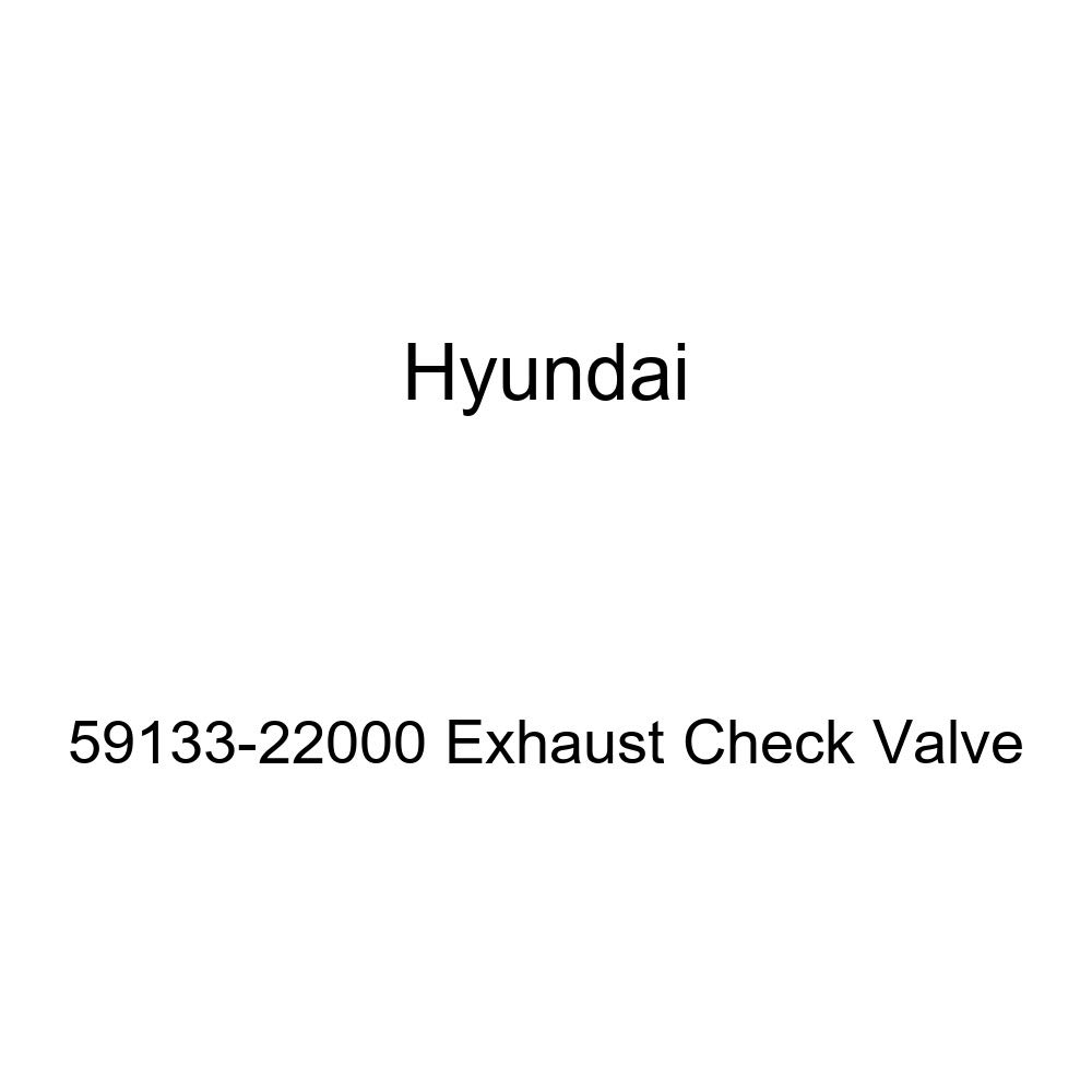 Genuine Hyundai 59133-22000 Exhaust Check Valve