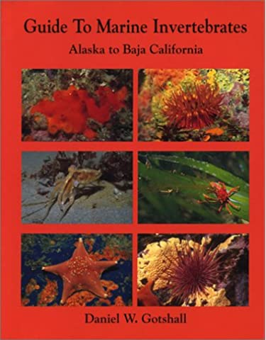 Guide to Marine Invertebrates Alaska to Baja California