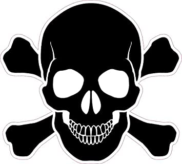 TWO Sticker 2 Pack Skull and Crossbones Vinyl Decal
