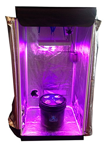 4 Site Hydroponic Grow Room - Complete Grow System with Grow Tent - LED Grow Lights by Abbaponics