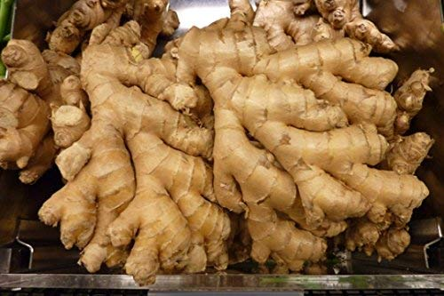 Organic fresh ginger from Pure (2)
