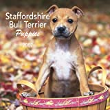Staffordshire Bull Terrier Puppies 2007 Mini Calendar