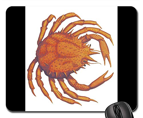 (Mouse Pads - Crab Vintage James Sowerby Fauna Marine Seafood)