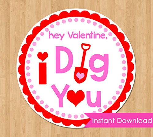 I Dig You Tags INSTANT DOWNLOAD, Printable Valentine Tags, Valentine's Day Stickers Circles Card Girl Party Class Classroom Favors School (I-class Card)