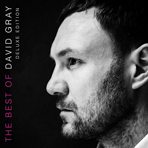 David Gray - The Best of David Gray - Deluxe Edition - 2CD - FLAC - 2016 - FORSAKEN Download