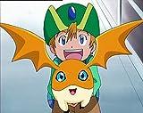 Digimon Adventure - Staffel 1, Volume 2: Episode 19-36