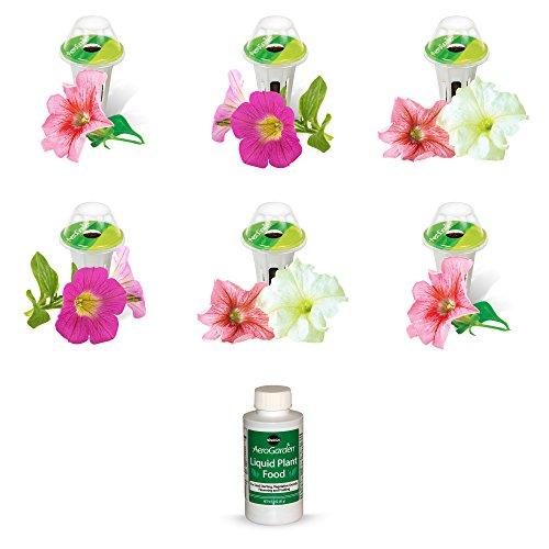 (AeroGarden Cascading Petunia Seed Pod Kit (6-Pod))