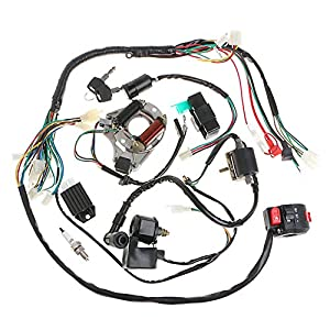 eagle depth finder wiring diagram amazon.com: minireen full wiring harness loom kit cdi coil ... eagle 100cc atv wiring diagram