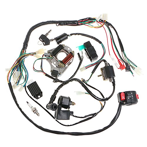 Minireen Full Wiring Harness Loom kit CDI Coil Magneto Kick Start Engine for 50cc 70cc 90cc 110cc 125cc ATV Quad Bike Buggy Go Kart Pit Dirt - Quad Kit Starter