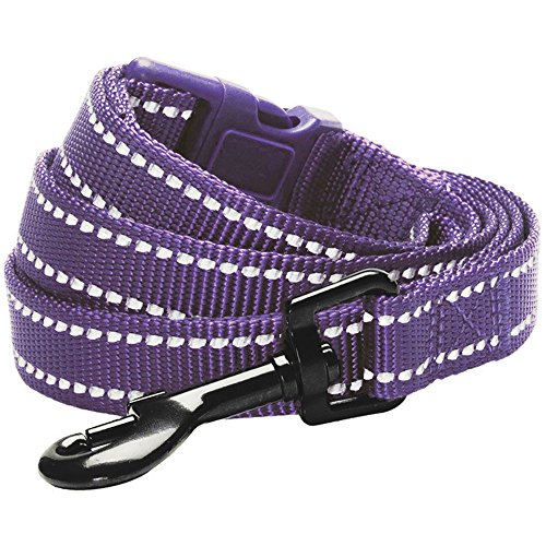 Picture of Blueberry Pet 6 Colors Durable 3M Reflective Classic Dog Leash 4 ft x 1