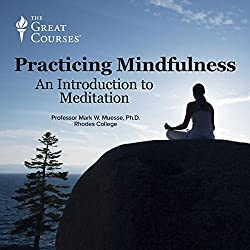Practicing Mindfulness: An Introduction to Meditation
