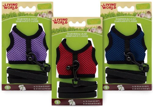 Living World Small Harness and Lead Set, Assorted Colors, My Pet Supplies