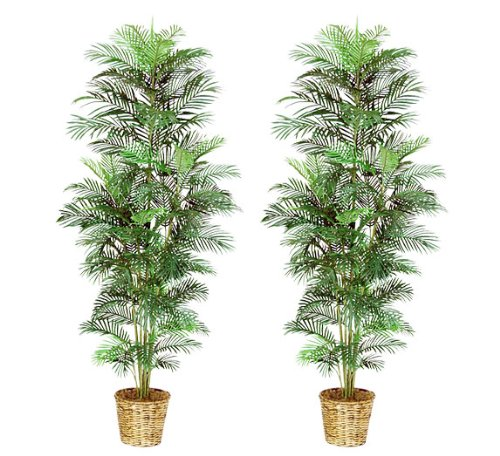 (TWO 8' Artificial Areca Palm Trees, with No Pot,)