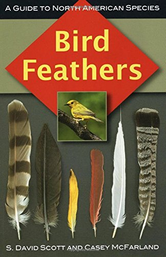Bird Feathers: A Guide to North American Species ()