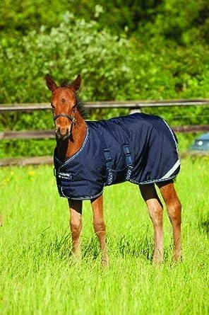 Navy Amigo Foal Turnout Rug