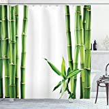 "Ambesonne Asian Shower Curtain, Branches of Bamboo Board Stalk Tropics Plants Greenery Fengshui Natural Lush, Cloth Fabric Bathroom Decor Set with Hooks, 70"" Long, Green White"