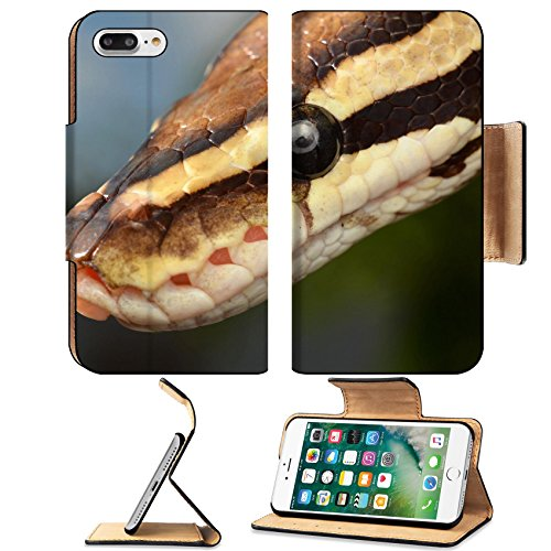 - Luxlady Premium Apple iPhone 7 plus iPhone 8 plus Flip Pu Wallet Case IMAGE ID: 37501826 Fire Ball Snake close up eye and detail scales