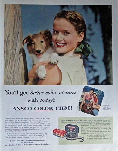 Color Ansco Film (Ansco Color Film, 50's Print Ad. Color Illustration (woman with puppy) Original Vintage 1953 Collier's Magazine Print Art)