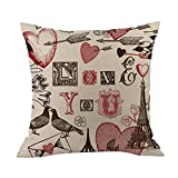 Cyhulu Kawaii 18x18 Inch Quote Throw Creative Cartoon Heart Print Square Pillow Case Cushion Cover Lover Gifts for Happy Valentine's Day Home Bed Sofa Living Room DIY Decoration (I, One size)
