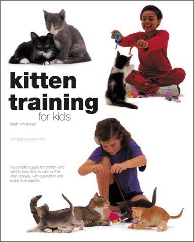 Kitten Training For Kids