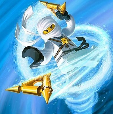 Amazon.com: SDore Ninjago White Ninja Spin Kick Edible 1/2 ...