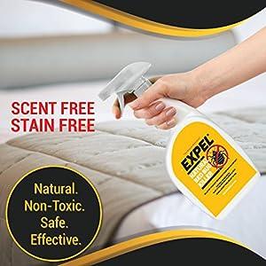 Expel Best Natural Bed Bug Killer Spray + 4 Bonus Glue Trap Insect Interceptors To Stop Climb Up Activity 24 fl oz