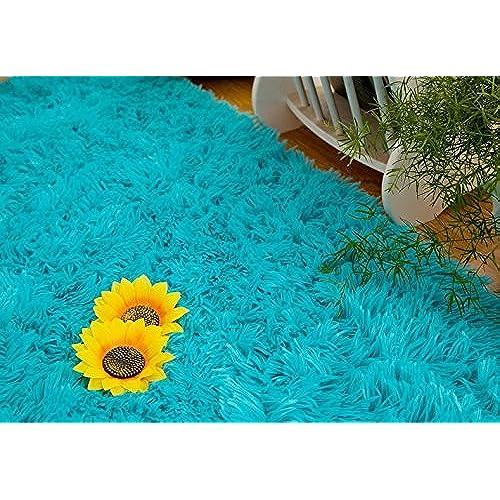 San Juan Turquoise Accent Rug: Turquoise Area Rug: Amazon.com