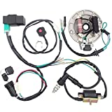 Royitay Kick Start Dirt Pit Bike Wire Harness Wiring Loom CDI Ignition Coil Magneto Spark Plug Rebuild Kit for 50cc 70cc 90cc 110cc 125cc Stator CDI Coil ATV Quad Bike Go Kart