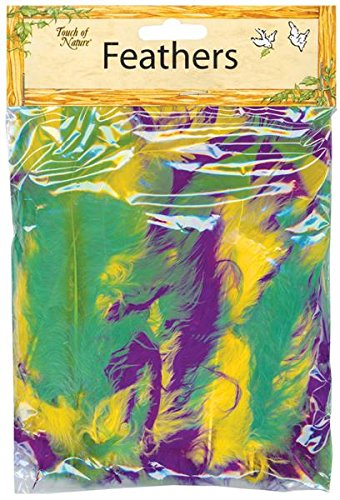 Touch of Nature Turkey Flat Feathers for Arts and Crafts, Mardi Gras Mix -