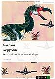 Aepyornis: Der Vogel, der die größten Eier legte