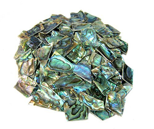 4 oz. Irregular Shape One Side Polished Green Abalone Heart Shell for Guitar Inlay, Jewelry Design, (Shape Oyster)