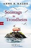 Sonntags in Trondheim: Roman (Die Lügenhaus-Serie, Band 4)