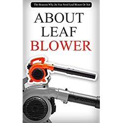 About Leaf Blower: The Reasons Why Do You Need Leaf Blower Or Not