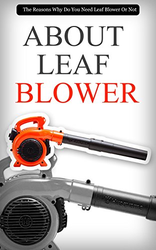 About leaf blower the reasons why do you need leaf blower or not about leaf blower the reasons why do you need leaf blower or not by fandeluxe Gallery