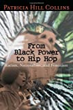 From Black Power to Hip Hop: Racism, Nationalism, and Feminism (Politics History & Social Chan)