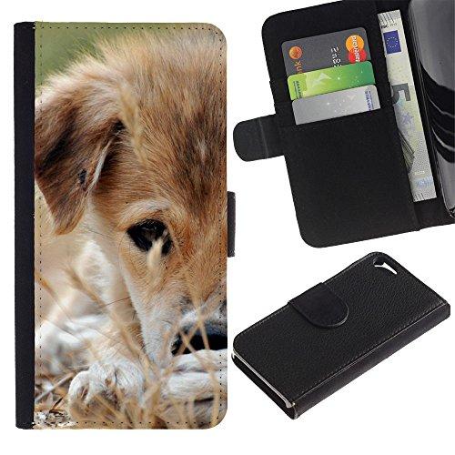 EuroCase - Apple Iphone 5 / 5S - mongrel puppy brown white grass dog - Cuero PU Delgado caso cubierta Shell Armor Funda Case Cover
