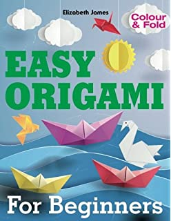 EASY ORIGAMI For Beginners Colour And Fold